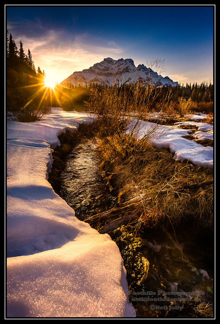 Photograph Cascade Gold by Neil Jolly on 500px