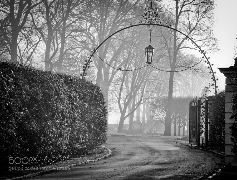 The old world charm of Grosse Pointe Shores, Michigan looks dramatic under a thick morning fog. This is one of hundreds of classic estates along Lakeshore Rd., on the shores of Lake St. Clair.