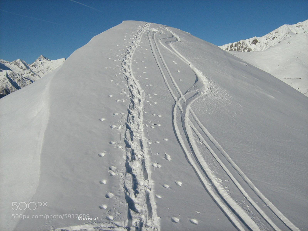Photograph Chiseled Tracks by Marco Soggetto on 500px