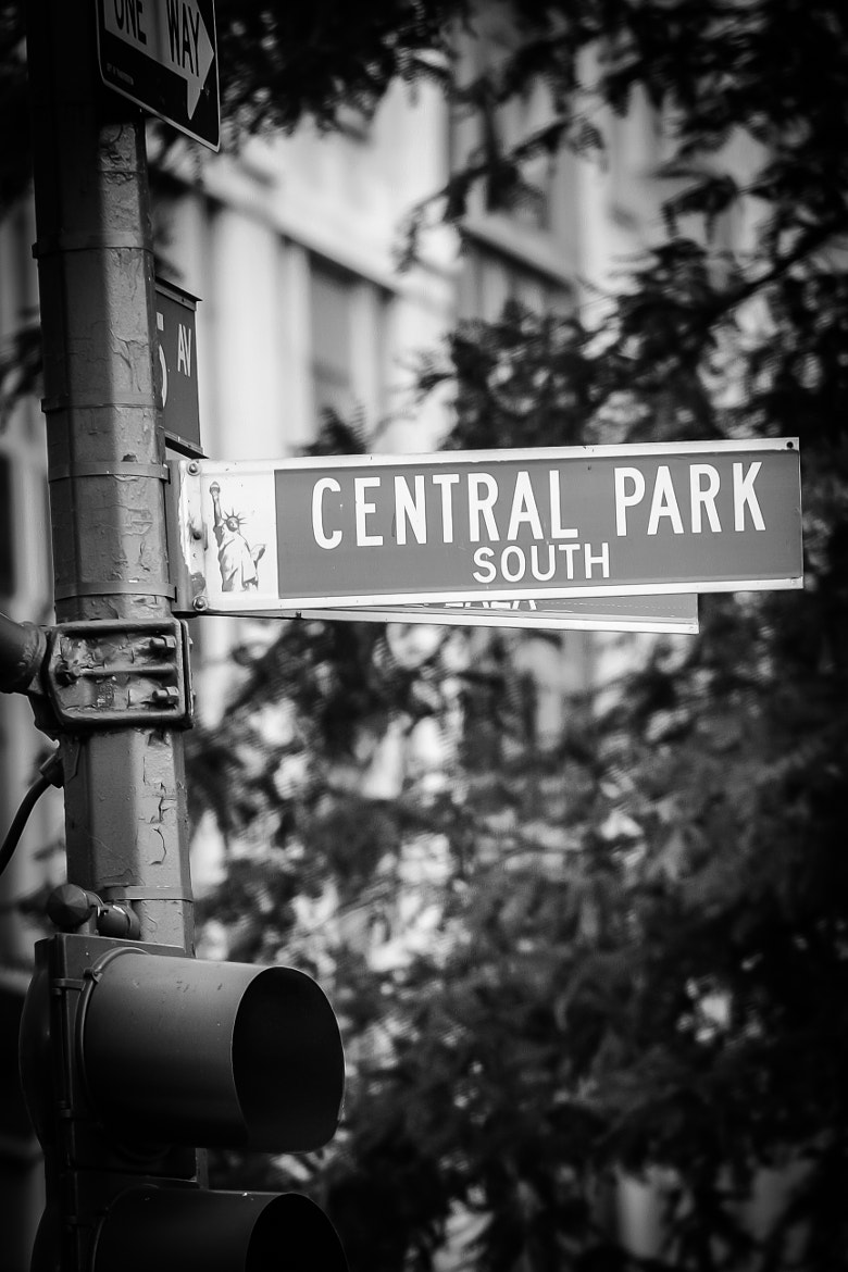 Photograph Central Park South by Franck Nijhof on 500px