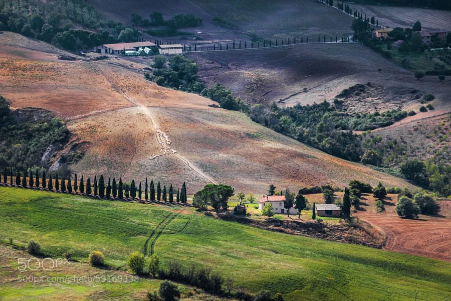 Tuscany life by Marina Sorokina on 500px.com