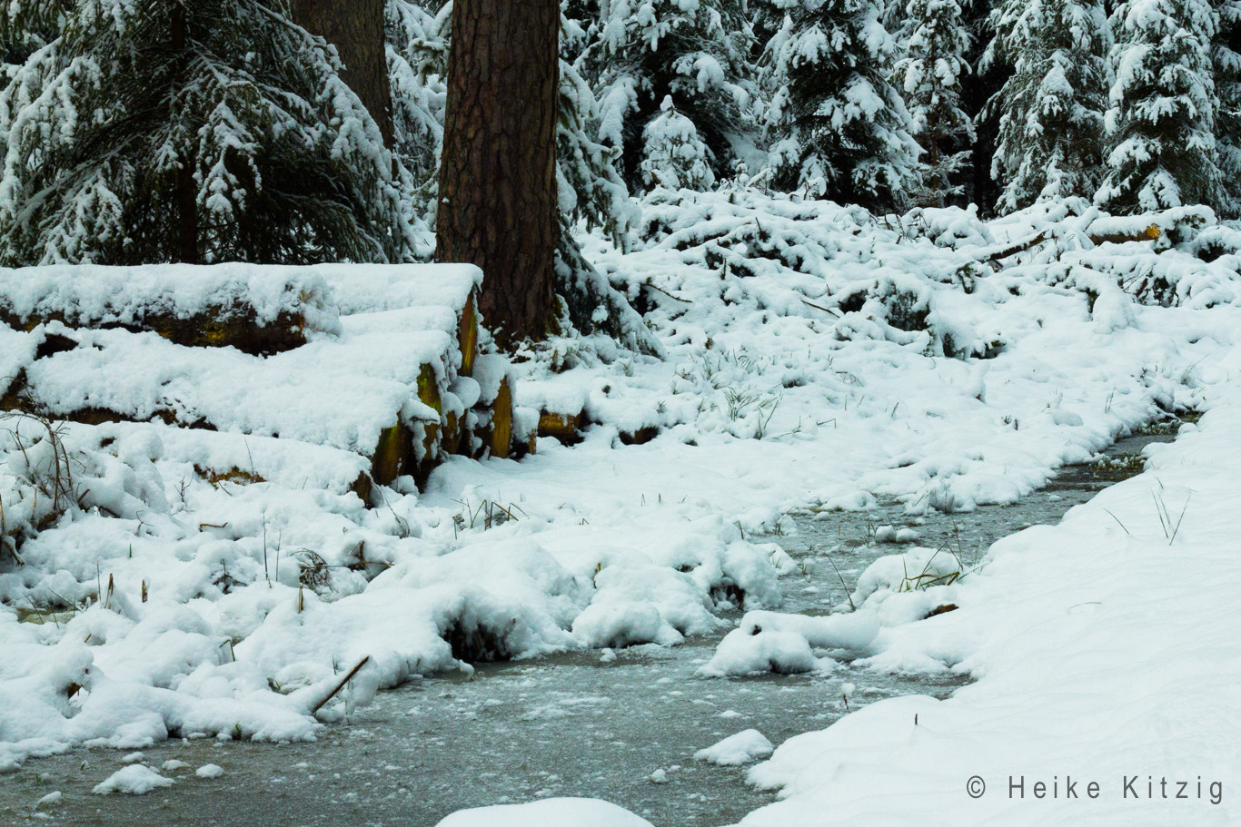 Photograph Winter in the Black Forest Germany by Heike Kitzig on 500px