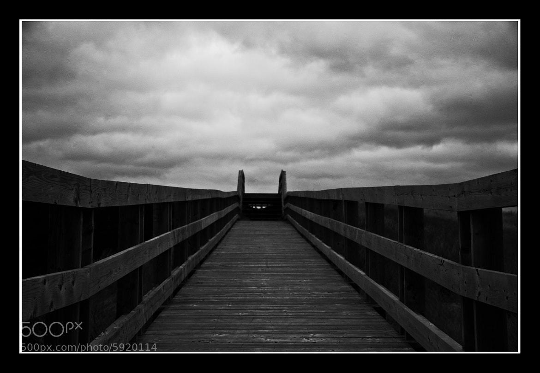Photograph Boardwalk to Heaven by Jamie LeBlanc on 500px
