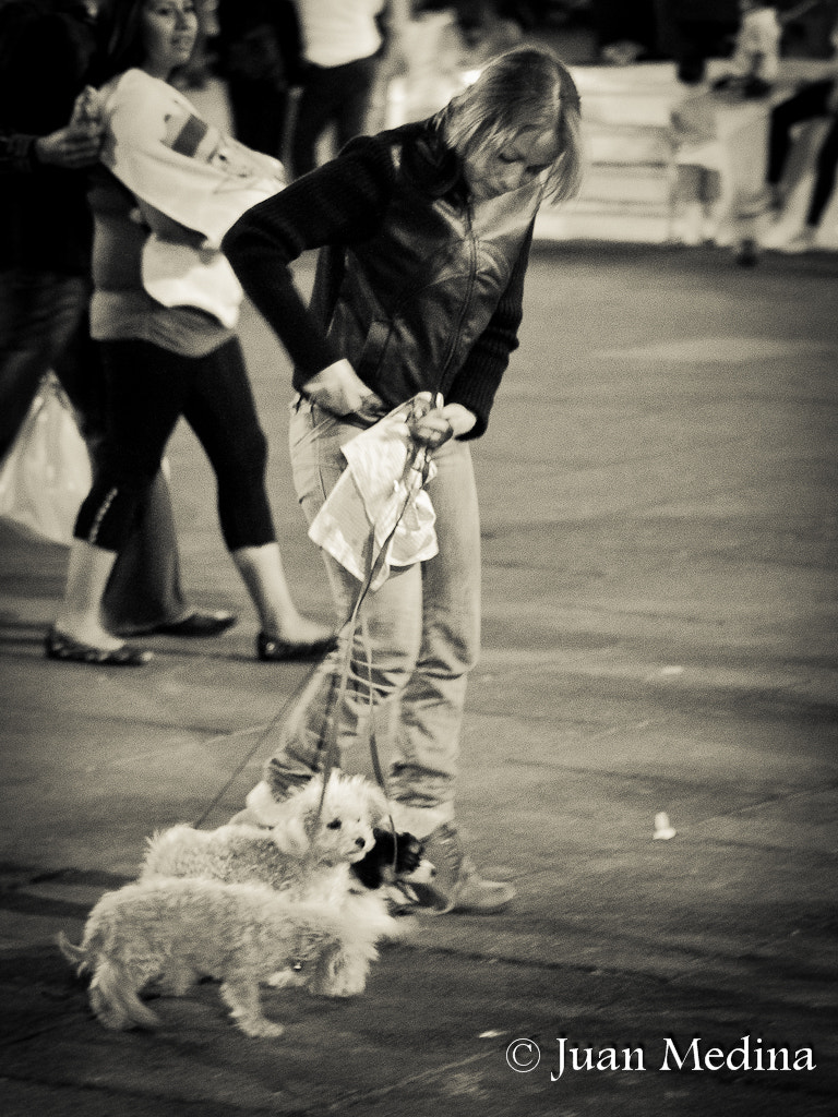 Photograph Craizy for the dogs by Juan Medina on 500px
