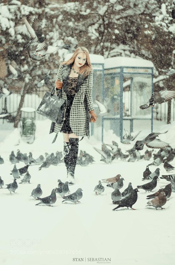 Photograph Winter Photo Shooting by Stan Sebastian on 500px