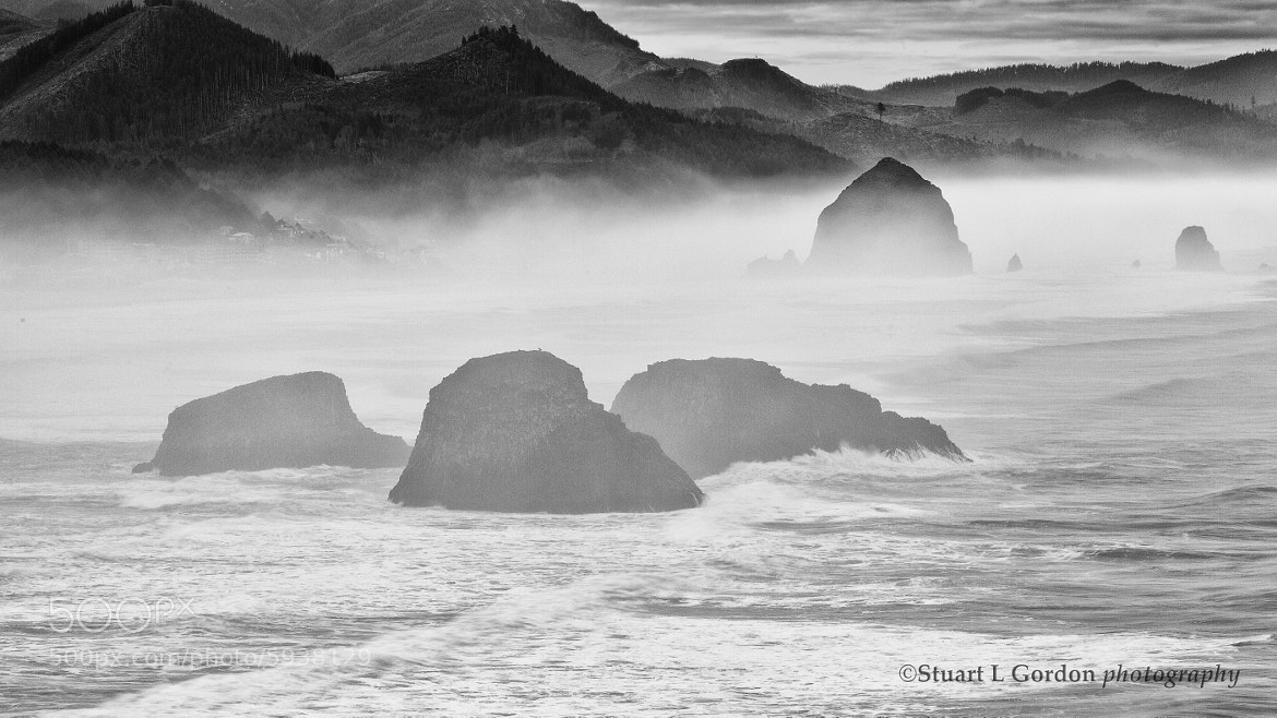 Photograph Stacks in the Mist by Stuart Gordon on 500px