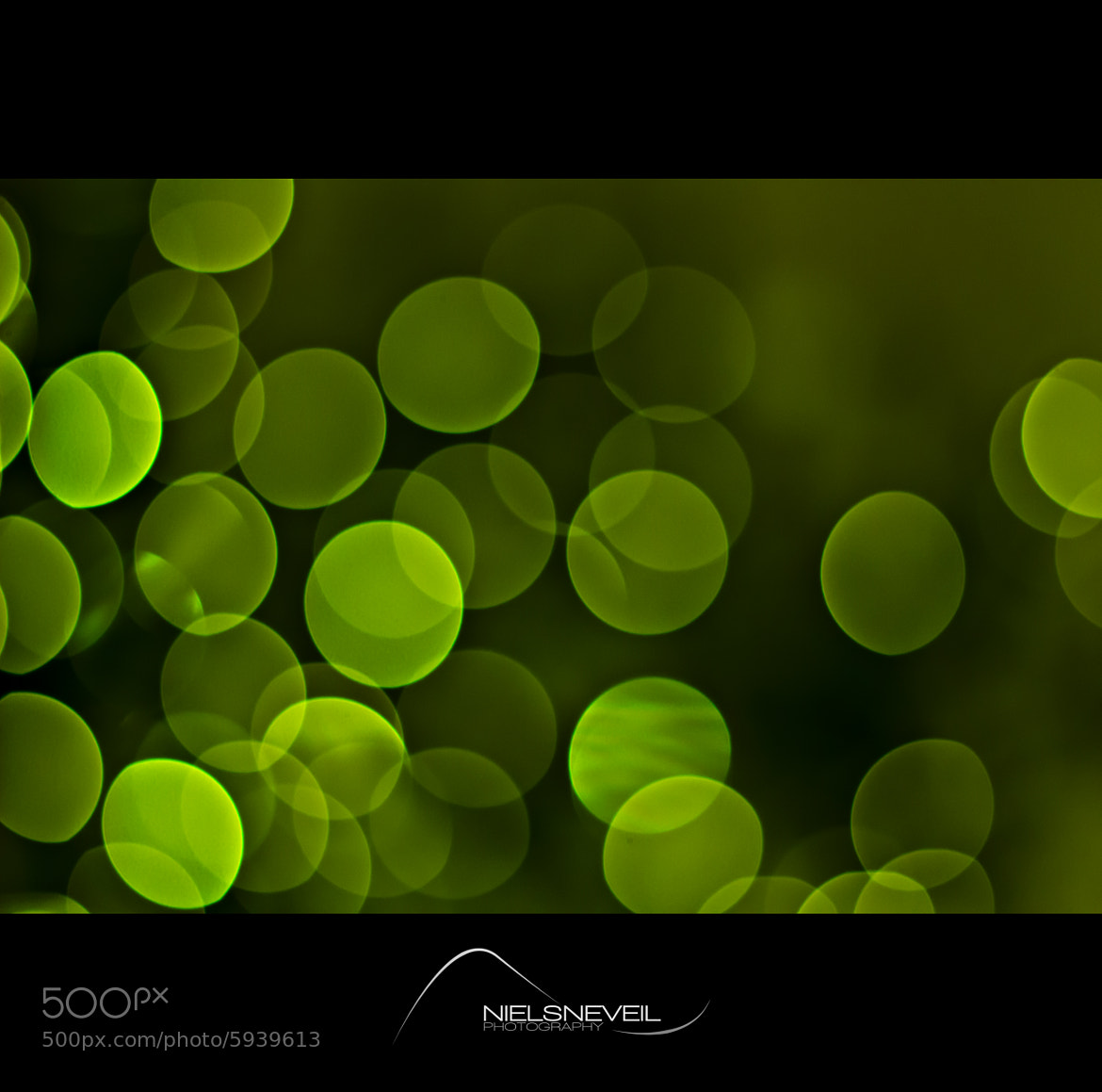 Photograph Some green by Niels Neveil on 500px