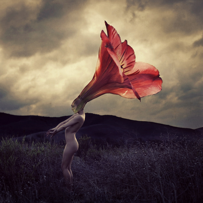 Photograph Thorns That Flowers Grow by Brooke Shaden on 500px