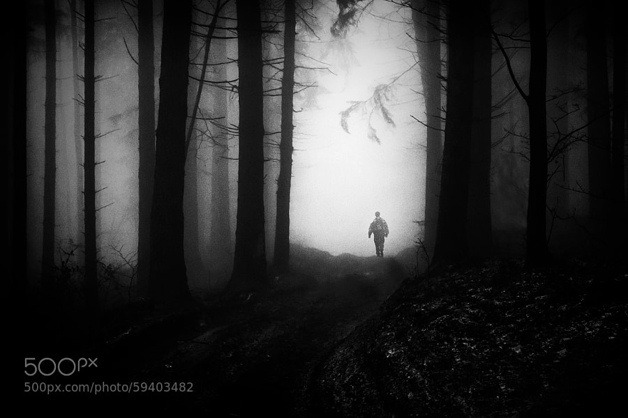 Photograph Escape from Darkness by David Sidor on 500px