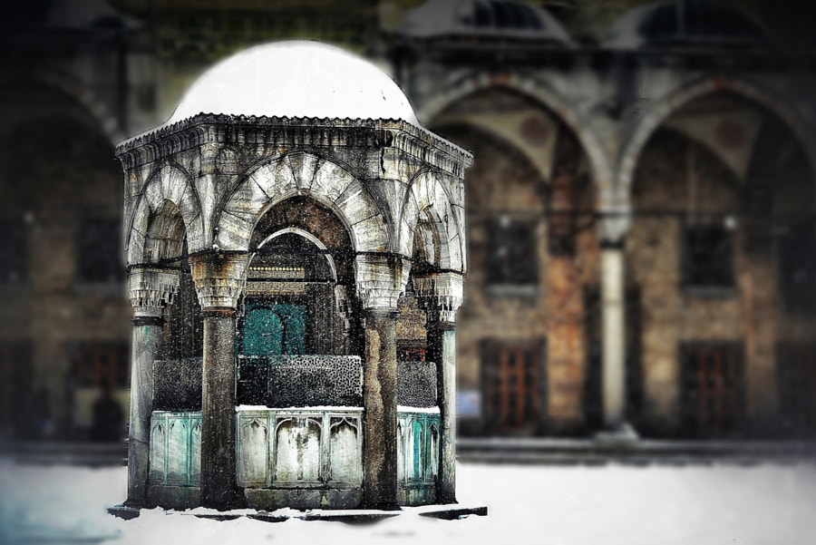 Old history in istanbul by Aylin Kinacioglu on 500px.com