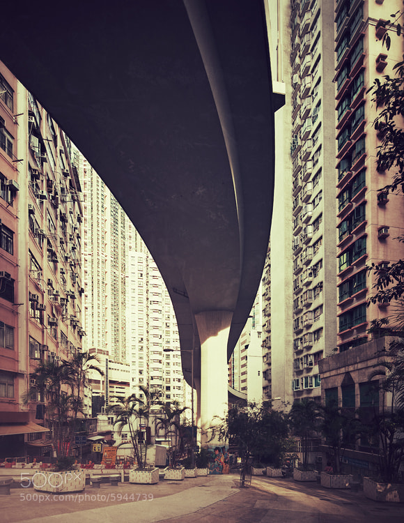 Photograph this is hong kong by Jens Fersterra on 500px