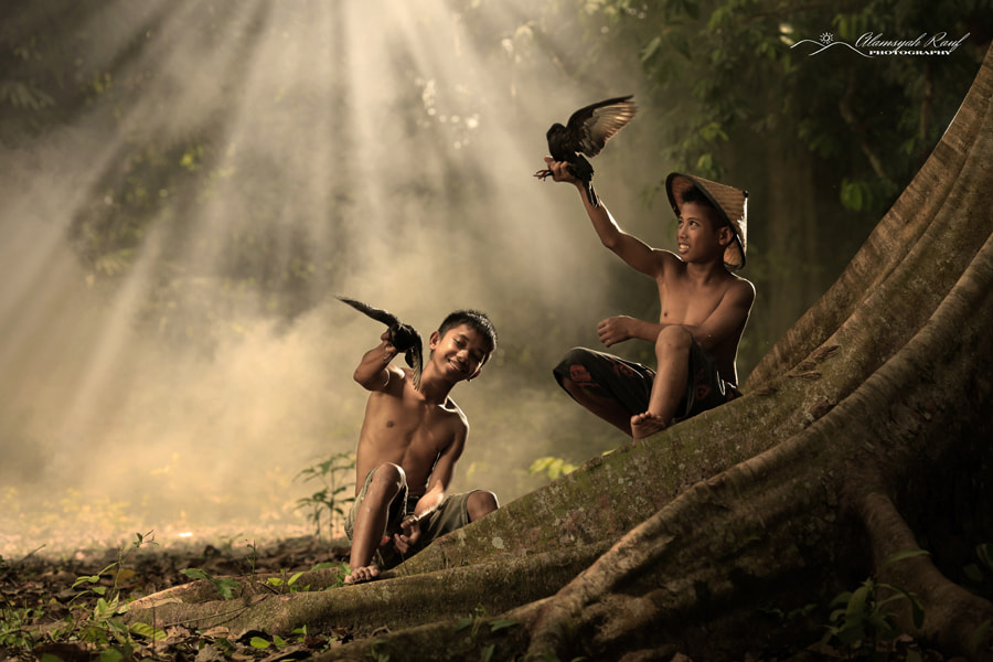 Photograph Birds Play by Alamsyah Rauf on 500px