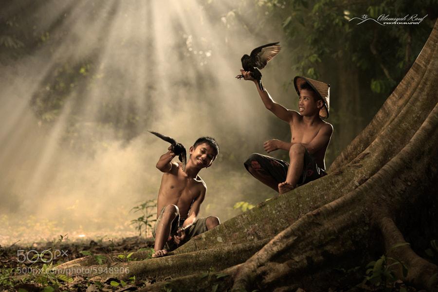 Photograph Birds Play by Alamsyah Rauf on 500px