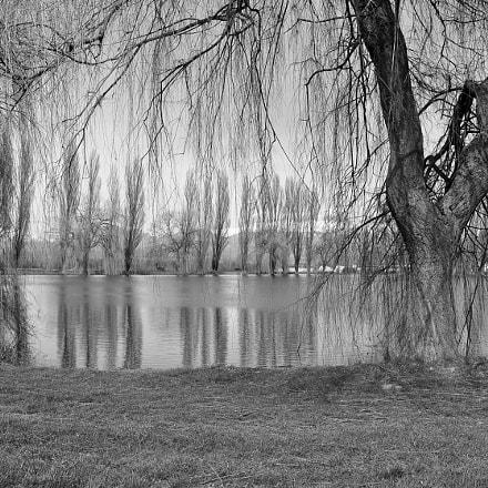 Lake in b/n