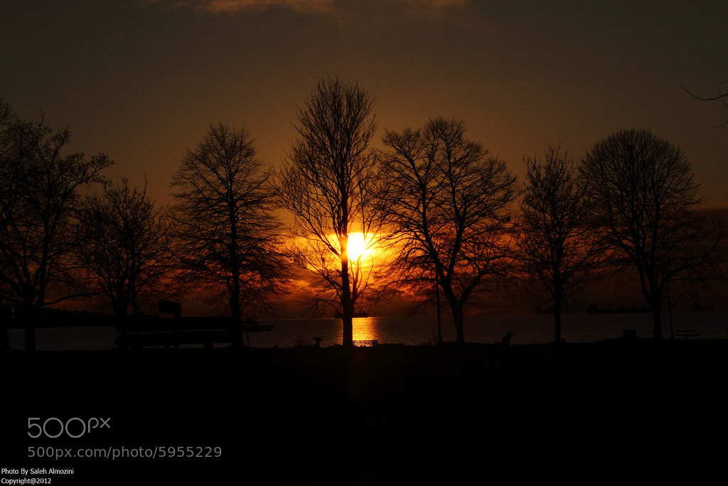 Photograph Sunset Silhouette by saleh almozini on 500px
