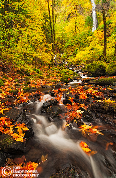 Photograph Fall at Starvation Creek by Joel Brady-Power on 500px