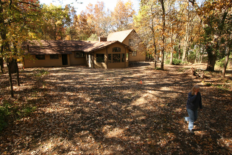 Wooded Lot Transformation Before