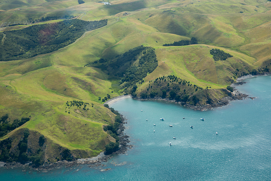 Auckland bay from above