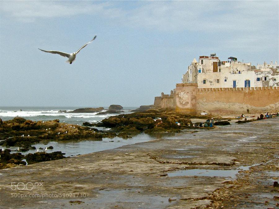 Essaouira (Marruecos) by MANUEL MARTIN ALVAREZ on 500px
