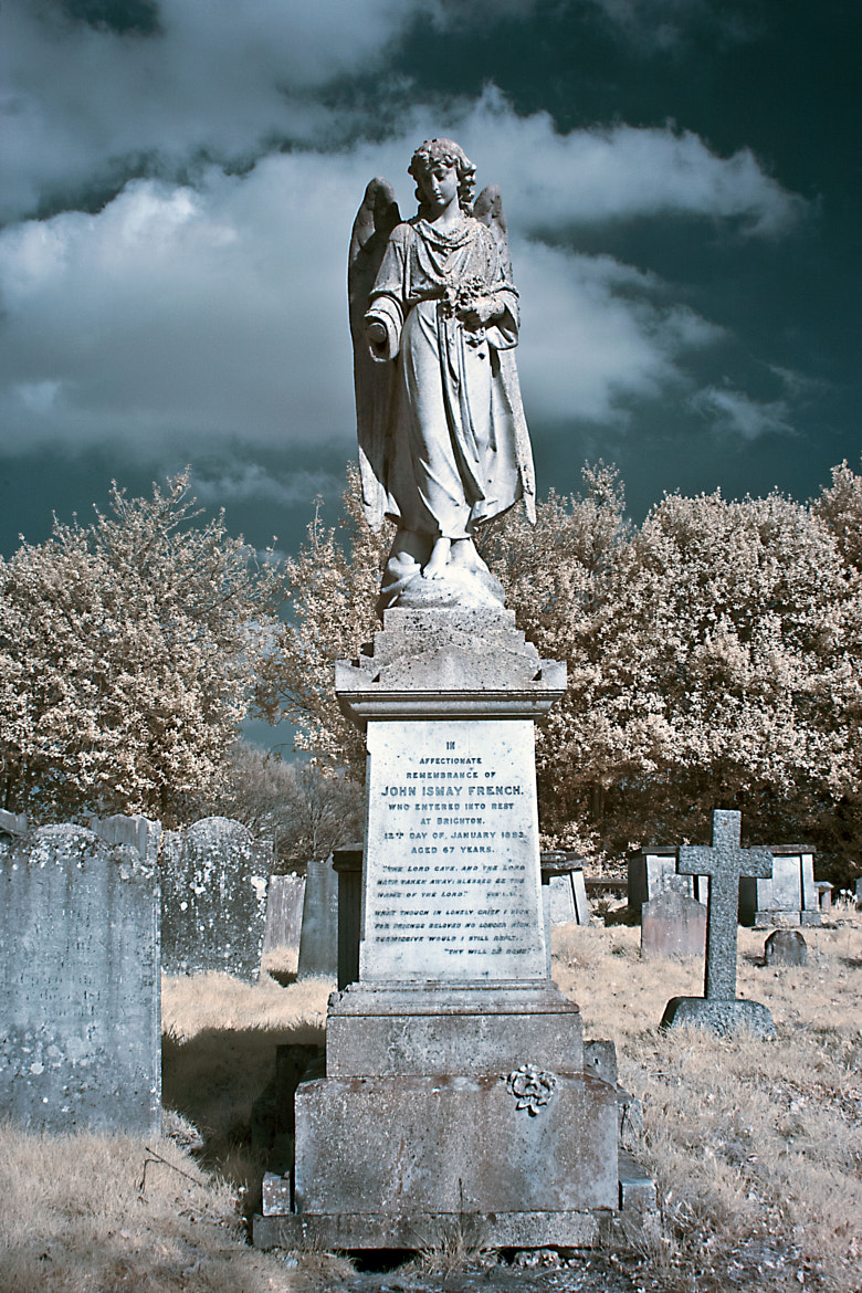 Photograph The Angel of Stone by Steven Ellis on 500px