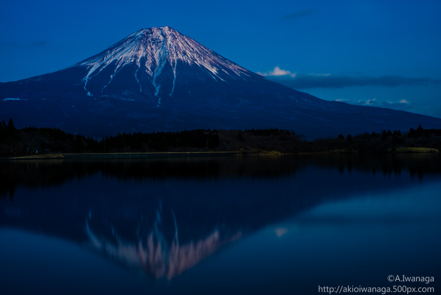 Fuji of twilight