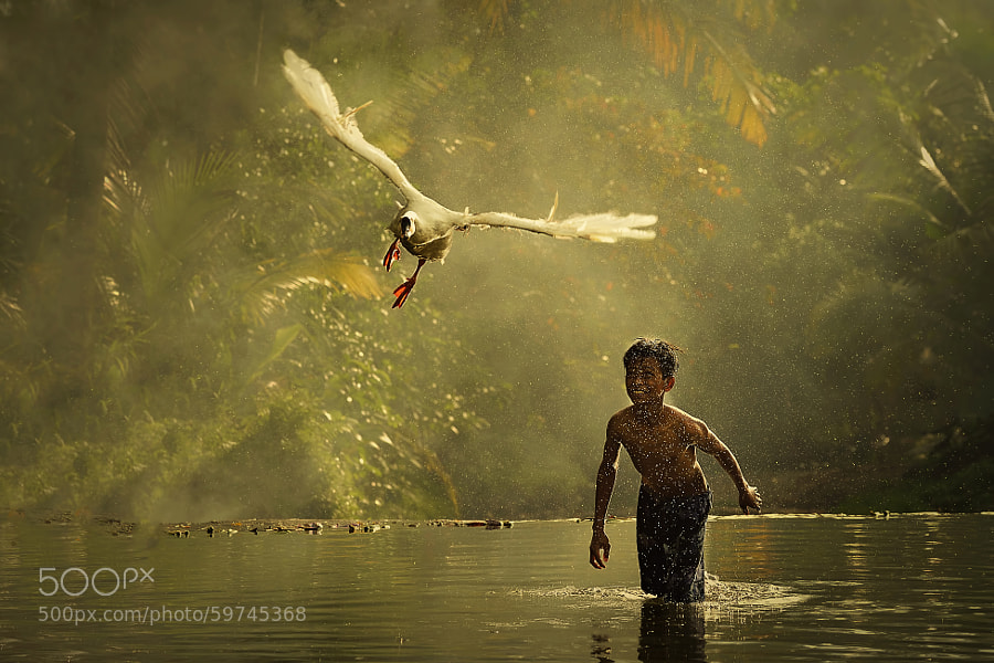 Photograph Flight!!!!! by Vichaya Pop on 500px