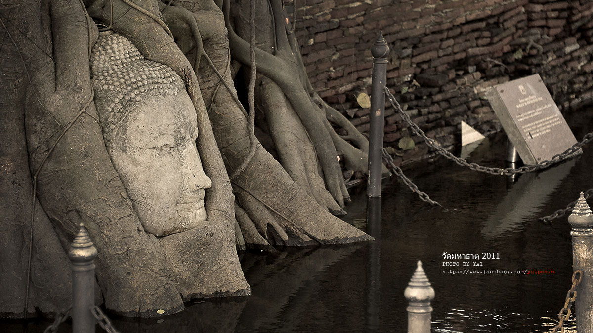 Photograph THAILAND FLOOD 2012 by suphasawat pearntunyakorn on 500px