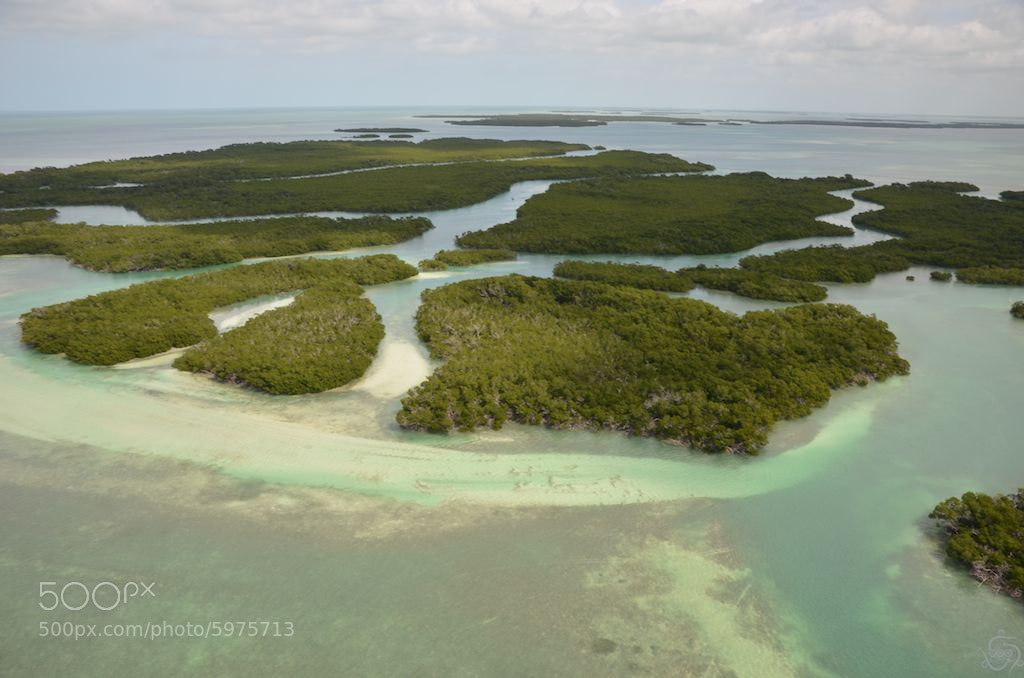 Photograph Over the Mangroves by Ed O'Malley on 500px