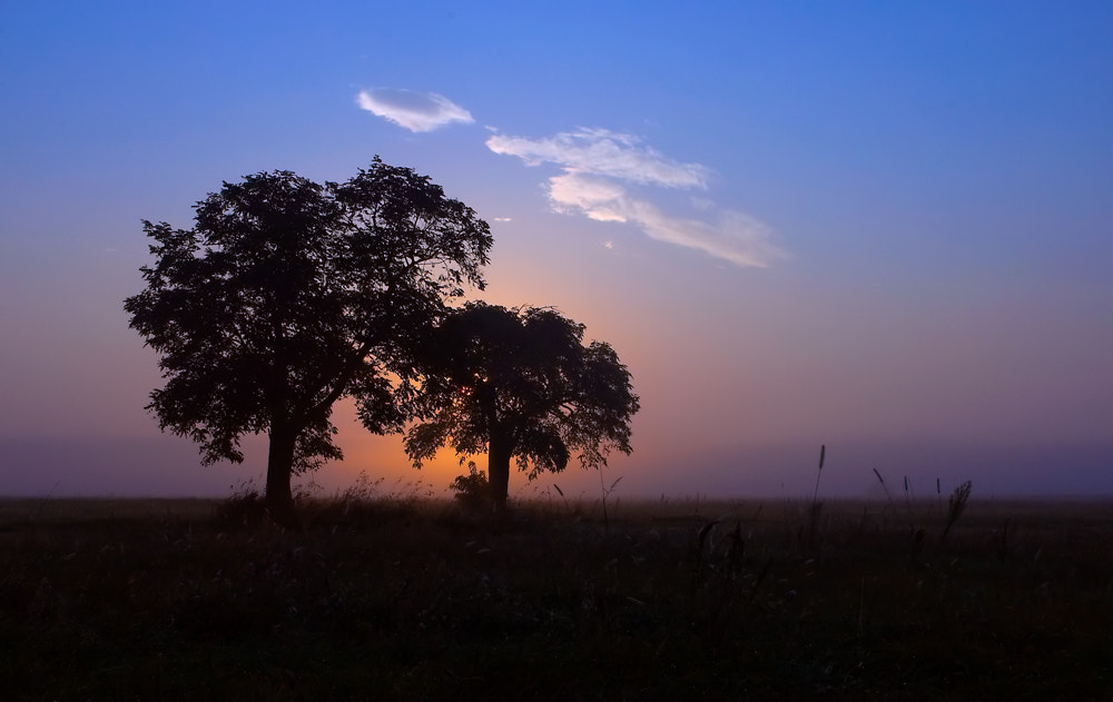 Photograph  Dawn silhouette by István Ponty on 500px