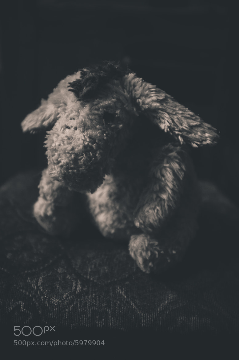 Photograph Sad Eeyore (Day 11) by Jesse Leite on 500px