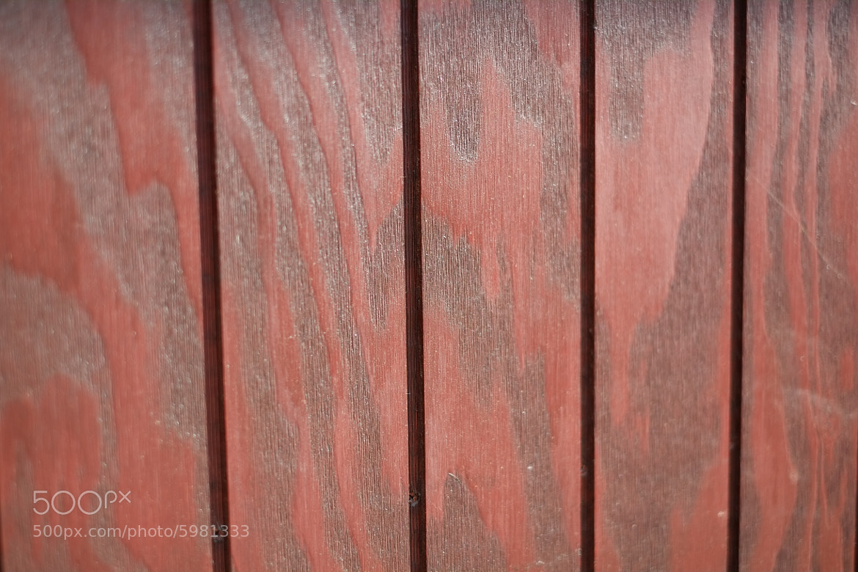 Photograph Wood by David Hellmann on 500px