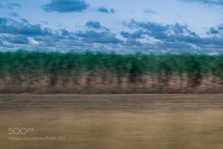 Photograph Fields by Scott Novak on 500px