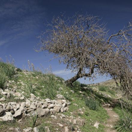 "[201] Tel Yodfat Trail (32°49'56.54""N  35°16'45.34""E)"