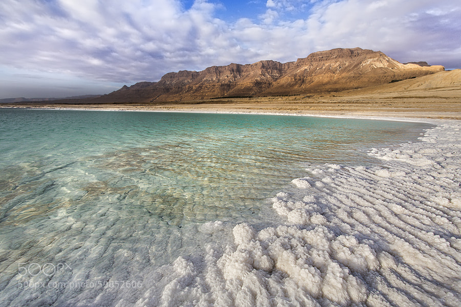 Photograph Dead Sea or tropical desert... by Tomer Razabi on 500px