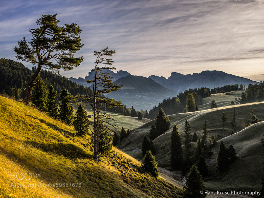 This photo was shot during the Phase One (PODAS) September 2013 photo workshop. It was shot using a Phase DF+, IQ160 digital back and the Schneider Kreuznach 75-150 lens. There is another photo workshop in October 2014 with a few seats available.