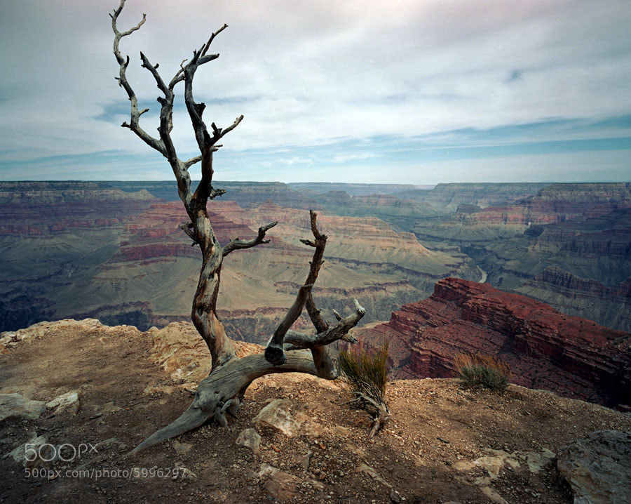 Photograph Grand Canyon by Steve Maniscalco on 500px