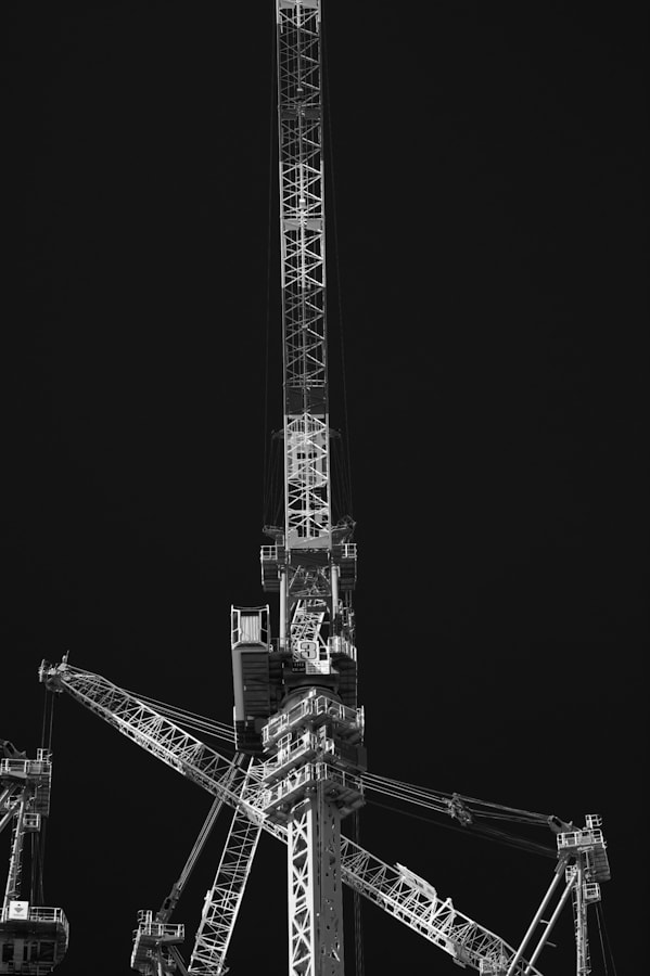 Photograph Crane Craze by Royze   on 500px