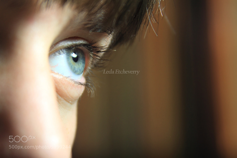 Photograph Eye by Leda Etcheverry on 500px