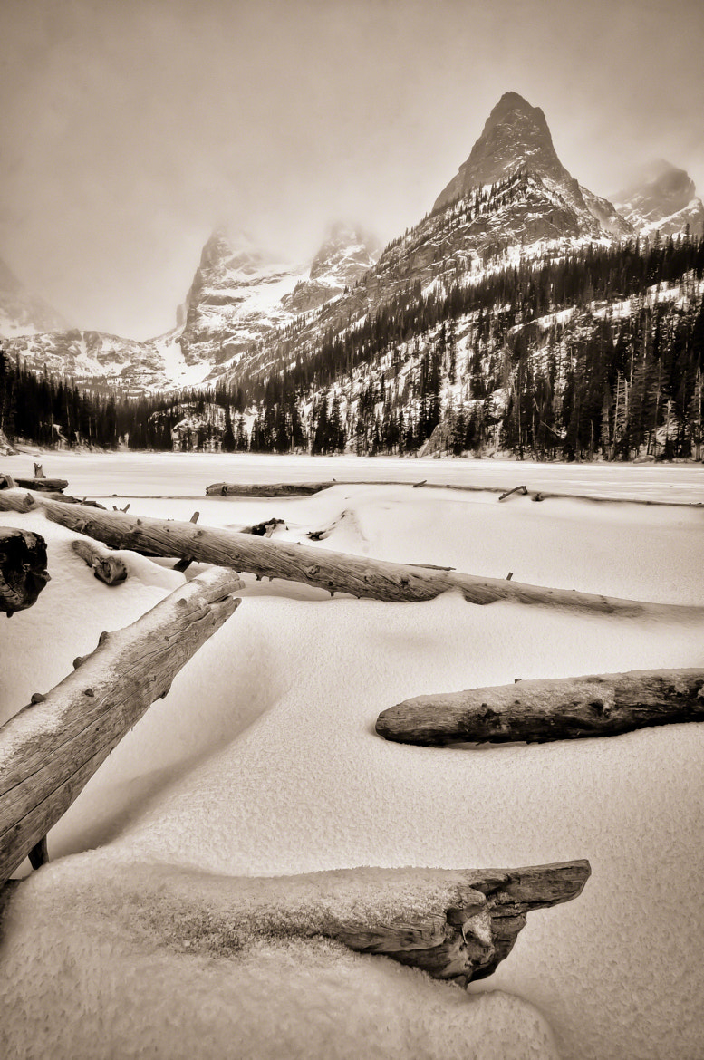 Photograph Wintry Logs At Lake Odessa by Mike Berenson on 500px