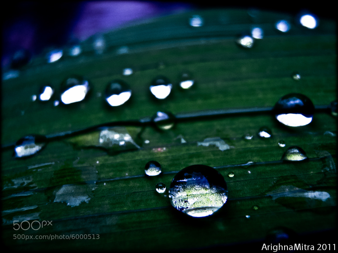 Photograph pearls by Arighna Mitra on 500px