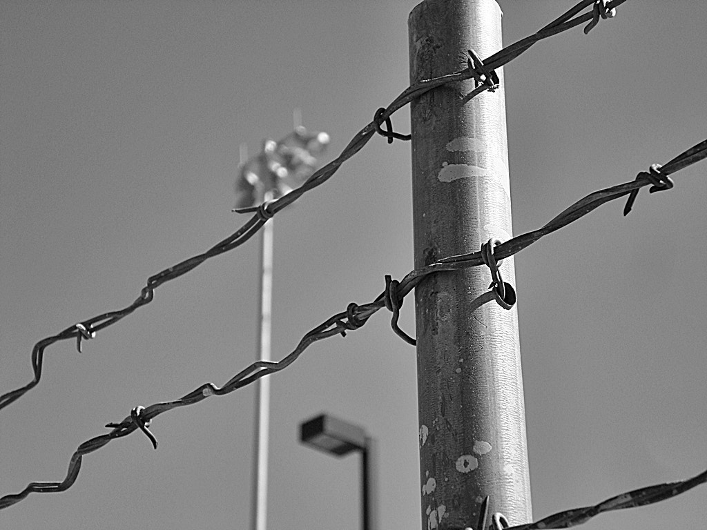 Photograph No Spring Training for You by Travis Staker on 500px