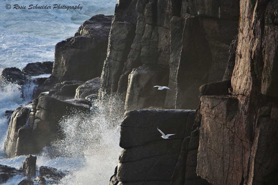 Photograph Rugged Cliffs and Stormy Seas by Rosie Schneider on 500px