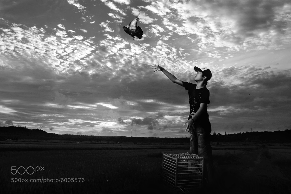 Photograph ....not for free by 3 Joko on 500px