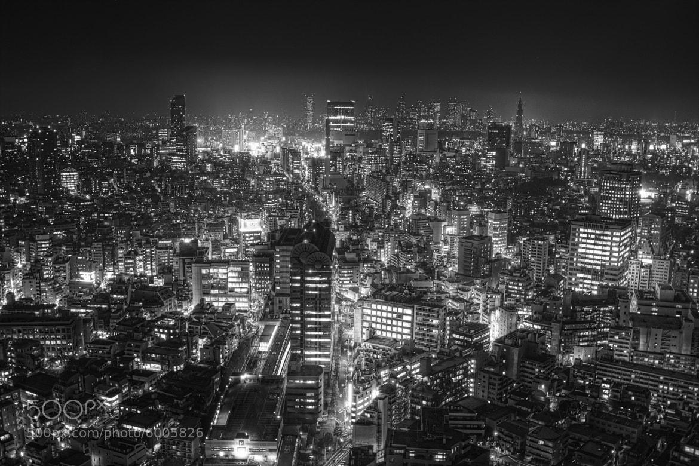 Photograph Tokyo 2012 by Kenji Doi on 500px