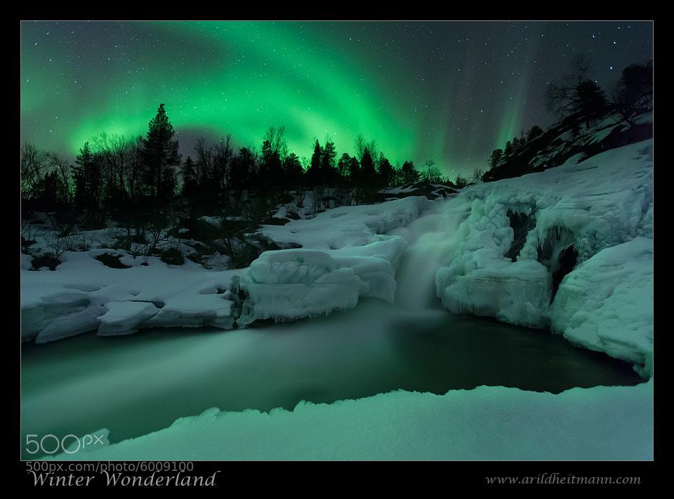 Photograph Winter Wonderland by Arild Heitmann on 500px