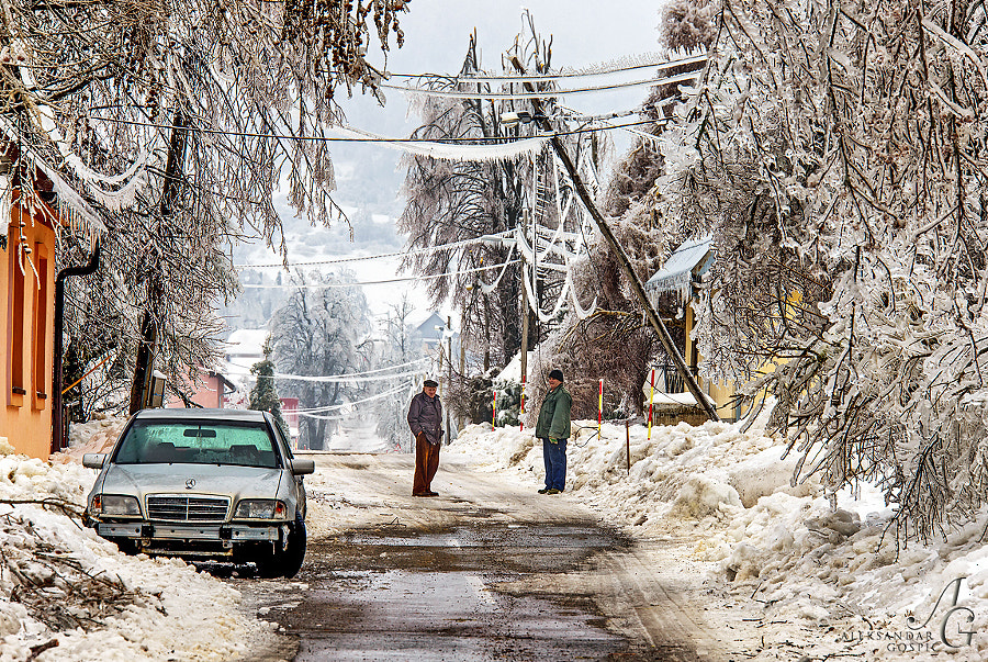 Post-apocalyptic world of Gorski Kotar region in Croatia, after an epic ice storm. Electric grid and especially deciduous forest suffered extensive damage.
