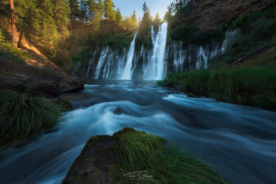 Photograph burney by Ted Gore on 500px