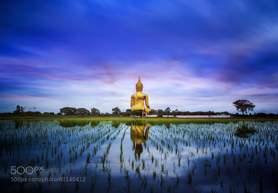 Photograph A biggest Buddha in Thailand by Anek S on 500px