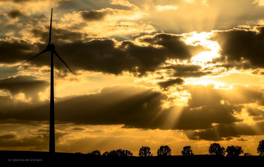 Sun in the modern fields