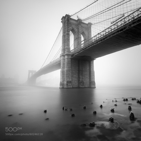 Photograph Brooklyn Bridge by Michal Vitásek on 500px
